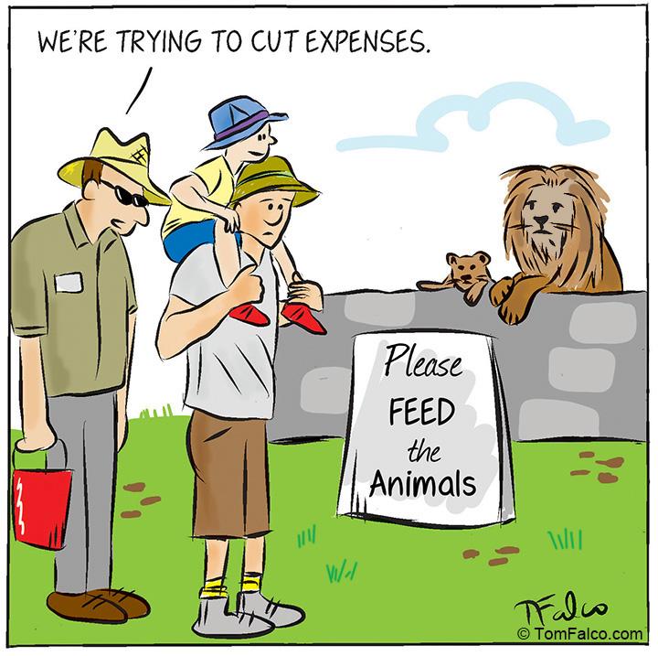 zoo-print